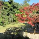 宗隣寺庭園